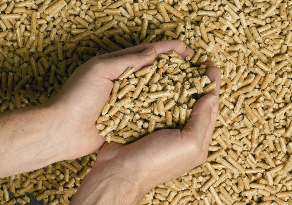 Wood Pellets France ~ Piveteaubois energy piveteau bois
